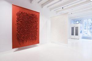 Rood en Wit Coral - WoOL. Foto:  Hugo Thomassen
