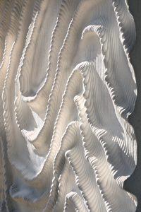 Naturalis: detail van de zeeanemonen in beton. (Foto: scagliolabrakkee / © Neutelings Riedijk architects)