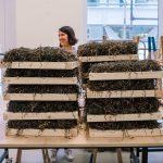 Kathryn Larsen onderzoekt zeewier als dakbedekking