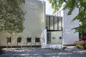 Rhizotrons, Debra Solomon.Who is We?Nederlandse paviljoen op de 17e Internationale Architectuurtentoonstelling – La Biennale di Venezia. Foto: Cristiano Corte.